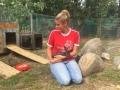 2018_07_24 Alsfeld 1 - Kaninchenrettung Rumänien 04
