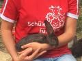 2018_07_24 Alsfeld 1 - Kaninchenrettung Rumänien 06