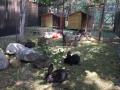 2018_07_30 Alsfeld 1 - Das Kaninchengehege ist fertig 03