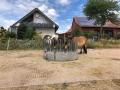 2018_07_31 Ludwigsau besucht Lebenshof für Nutztiere 02
