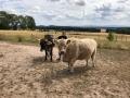 2018_07_31 Ludwigsau besucht Lebenshof für Nutztiere 07