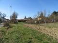 2019_02_27 Südpfalz 2. Müllaktion 04
