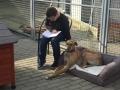 2019_02_28 Alsfeld Tiergestützte Leseförderung 01