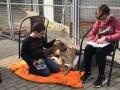 2019_02_28 Alsfeld Tiergestützte Leseförderung 04