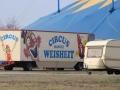 2019_03_24-Circus-Weisheit-09