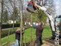 2019_04_13-Kandel-Bäume-für-Brillen-04