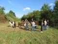 2019_09_17-Lamas-Alpakas-besuchen-08