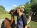 2019_09_17-Lamas-Alpakas-besuchen-10