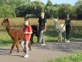 2019_09_17-Lamas-Alpakas-besuchen-47