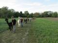 2019_09_17-Lamas-Alpakas-besuchen-58