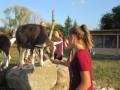 2019_09_17-Lamas-Alpakas-besuchen-79