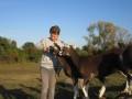2019_09_17-Lamas-Alpakas-besuchen-80