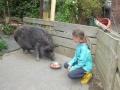 2021_08_26-Schweinefreunde-09