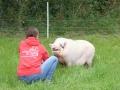 2021_08_26-Schweinefreunde-15