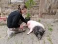 2021_08_26-Schweinefreunde-19