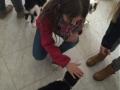 Schüler für Tiere Ludwigsau - Gemeinsam mehr erreichen (Teil 2) 04