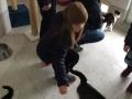 Schüler für Tiere Ludwigsau - Gemeinsam mehr erreichen (Teil 2) 05