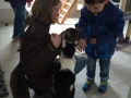 Schüler für Tiere Ludwigsau - Gemeinsam mehr erreichen (Teil 2) 07