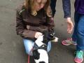 Schüler für Tiere Ludwigsau - Gemeinsam mehr erreichen (Teil 2) 12