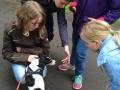 Schüler für Tiere Ludwigsau - Gemeinsam mehr erreichen (Teil 2) 13